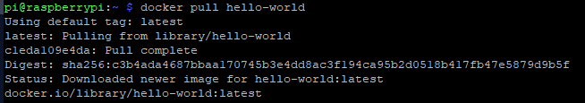 docker pull hello—world  Using default tag: latest  latest : Pulling from library/ hello—world  cledaIOge4da: Pull complete  Digest: sha2S6: c3b4ada4687bbaa17074Sb3e4dd8ac3f1g4cagSb2dOS18b417fb47eS87gdYbSf  Status: Downloaded newer image for hello—world: latest  docker . 10/ library/ hello—world : latest